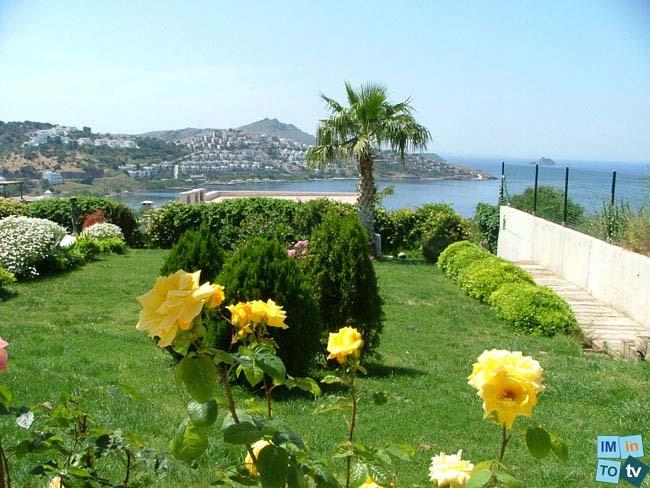 Bien nouveau, appartement deux chambres avec splendide vue mer , piscine, grande terrasse, au soleil et très proche des plages et de toutes commodités …