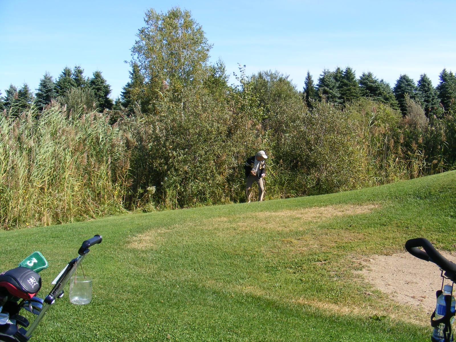 Psychologie du golf ou l'art de scrapper une ronde de golf