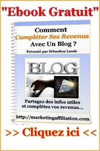 Faire un blog pour compléter ses revenus : Comment y arriver ?