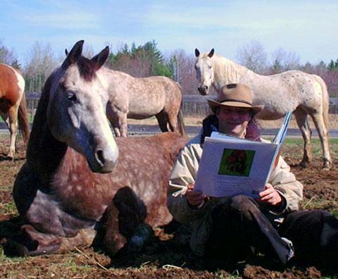 Les chevaux de rêves n'existent pas seulement dans les livres