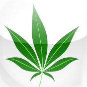 Drogues douces êtes vous pour ou contre la dépénalisation