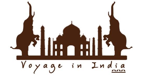 Voyages sur mesure avec Voyage in India!!!