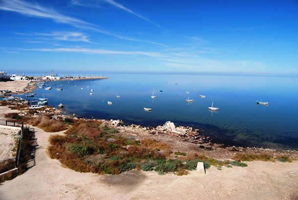 La Tunisie pays d'attraction pour les investisseurs étrangers