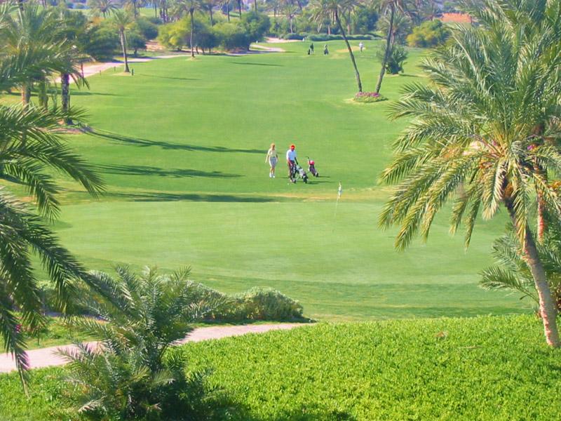 Djerba Midoun terrain à batir dans un lotissement situé au pied du golf