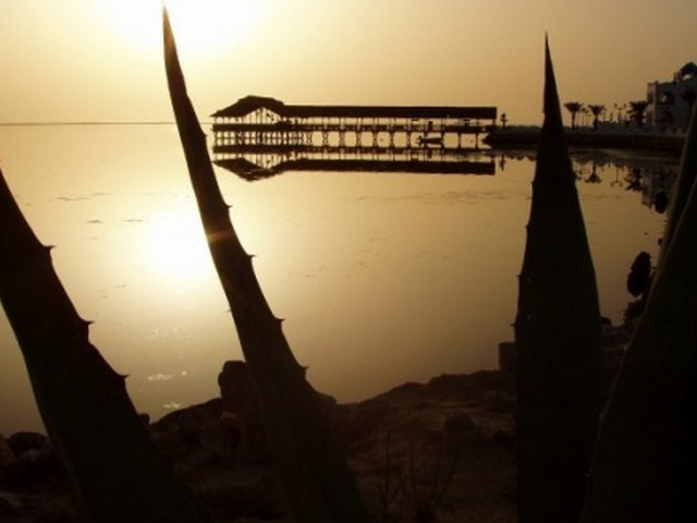 Tunisie ile de Djerba terrain en bord de mer avec titre bleu et permis bâtir
