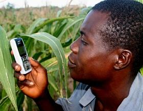 L'Afrique terre promise du téléphone mobile