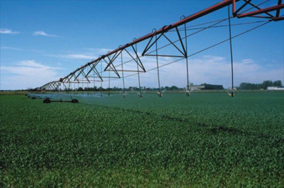 cherche partenaire financier pour projet agro alimentaire biologique bon rendement