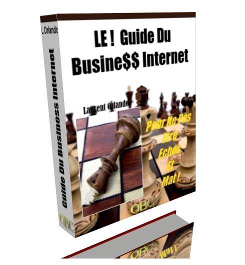 Découvrez le Guide Gratuit 2013 du Business Internet
