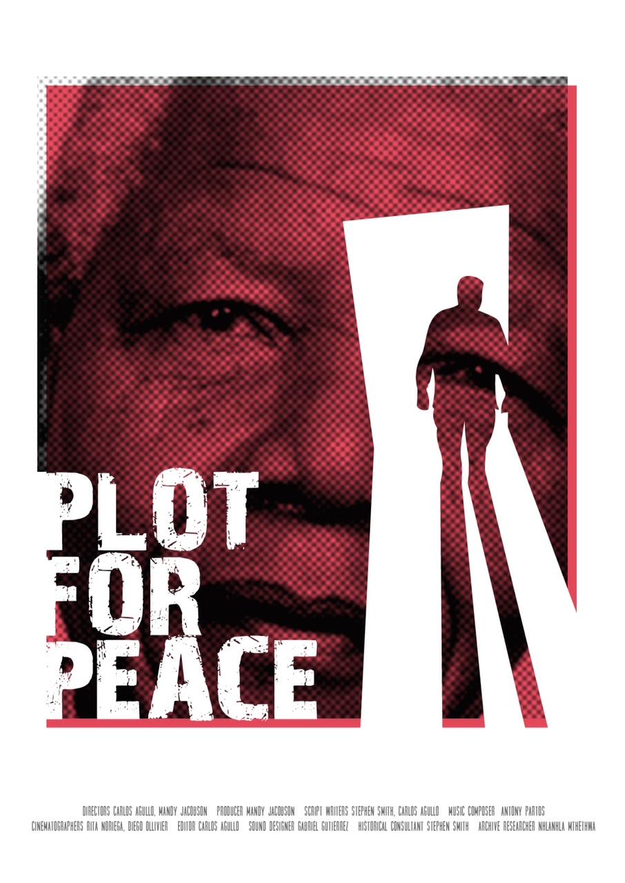 Jean-Yves Ollivier : Plot for Peace récompensé à Galway