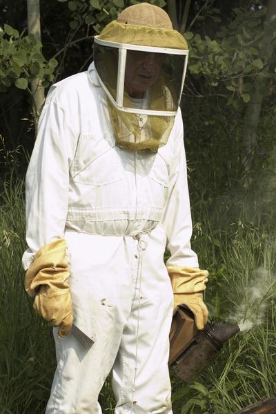 La combinaison « cosmonaute » : le vêtement indispensable de l'apiculteur
