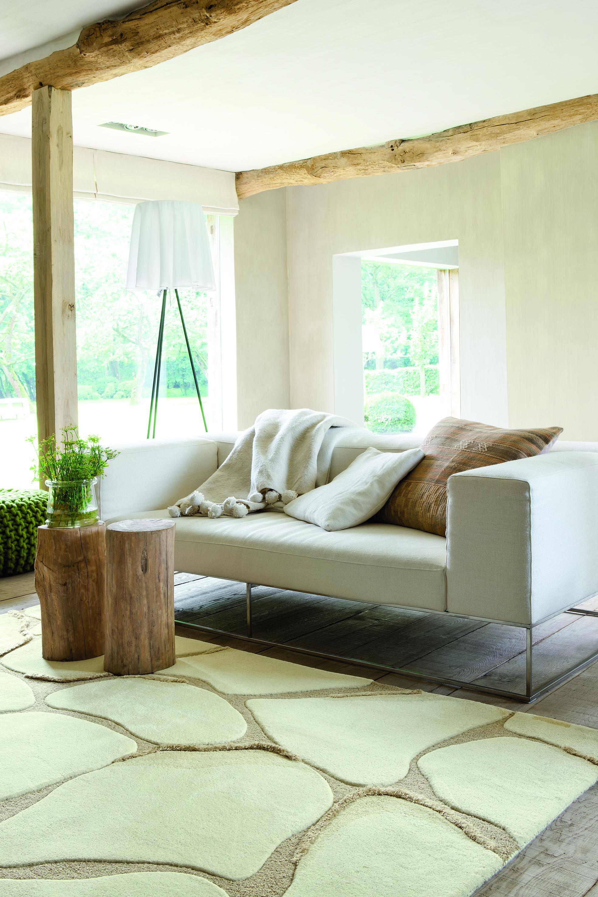Les tapis de salon illumineront votre salle de séjour