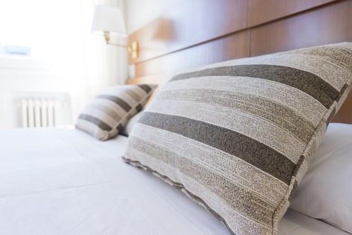 Focus sur la lutte contre les punaises de lit