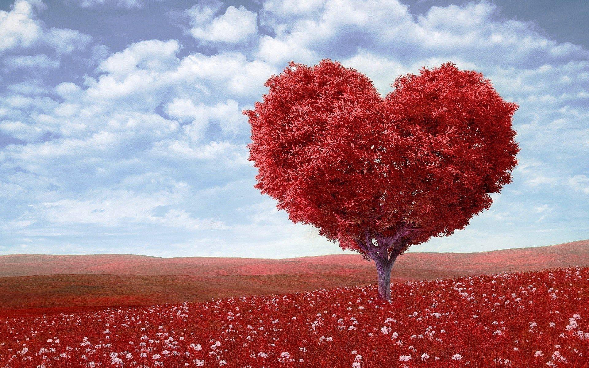 Comment faire un test réel de compatibilité amoureuse