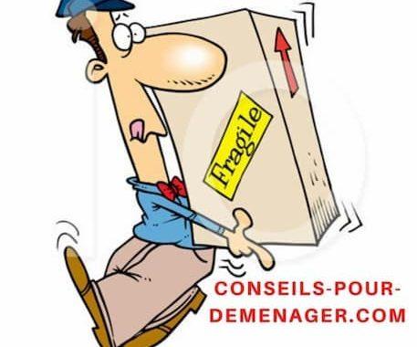 Consulter votre déménageur professionnel pour les meilleurs conseils !