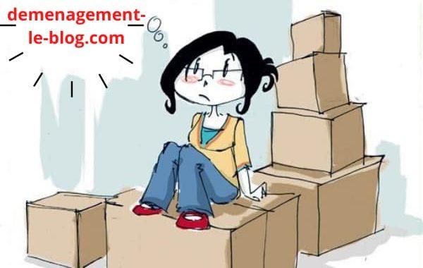 Réussir votre transfert professionnel ou personnel grâce au blog de déménagement !