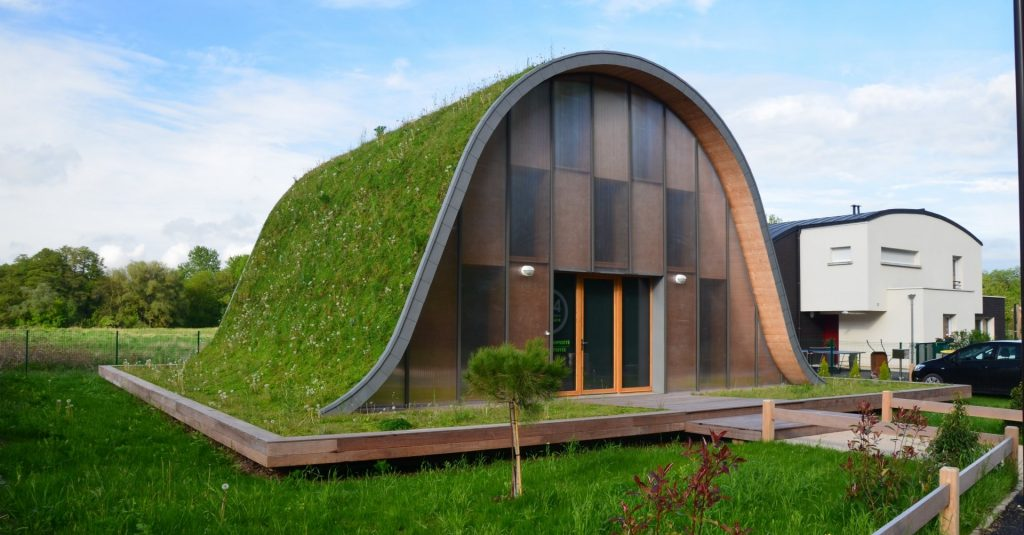 toiture écologique