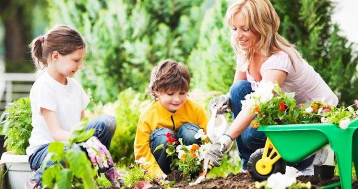 Les bienfaits du jardinage sur l'éducation