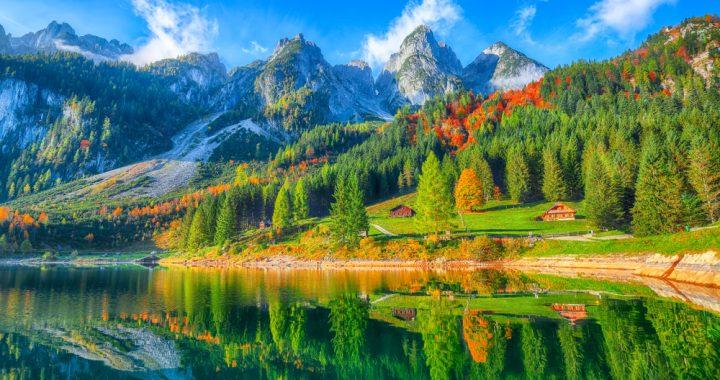 La forêt en Autriche, poumon vert de l'Europe