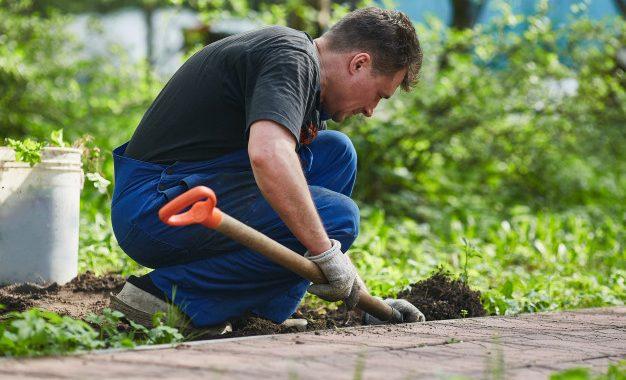Un jardin orienté au sud pourrait ajouter plus de 20000 £ à la valeur de votre maison