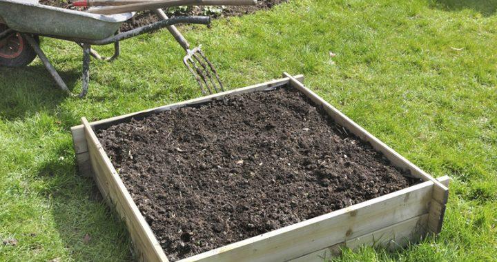 Nouveaux plans de jardin au potager en carré
