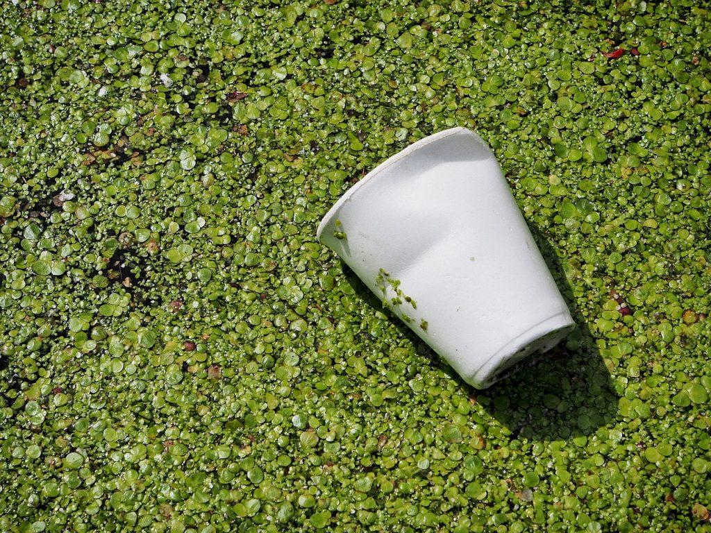 emballages biodégradables