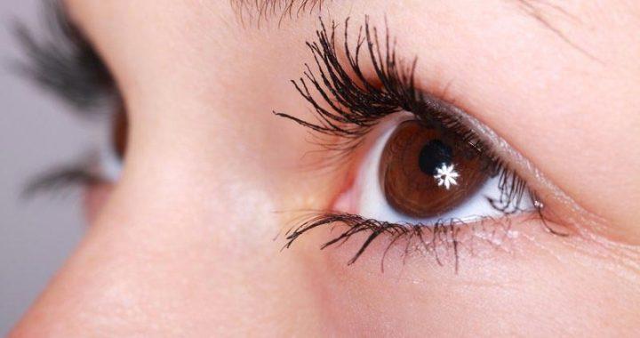 Greffe de sourcils : tout ce que vous devez savoir