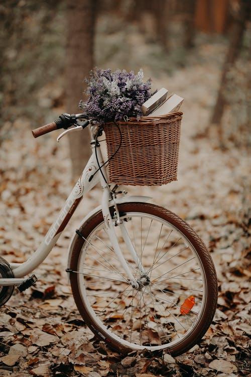 Vélo simple ou vélo électrique